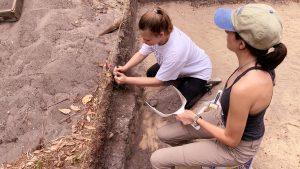 Students at Big Talbot Island dig